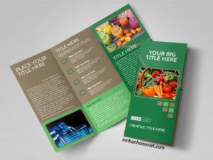 in-brochure-4