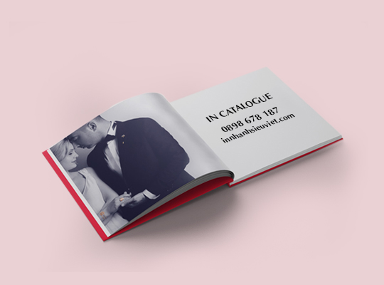 in-catalogue-1